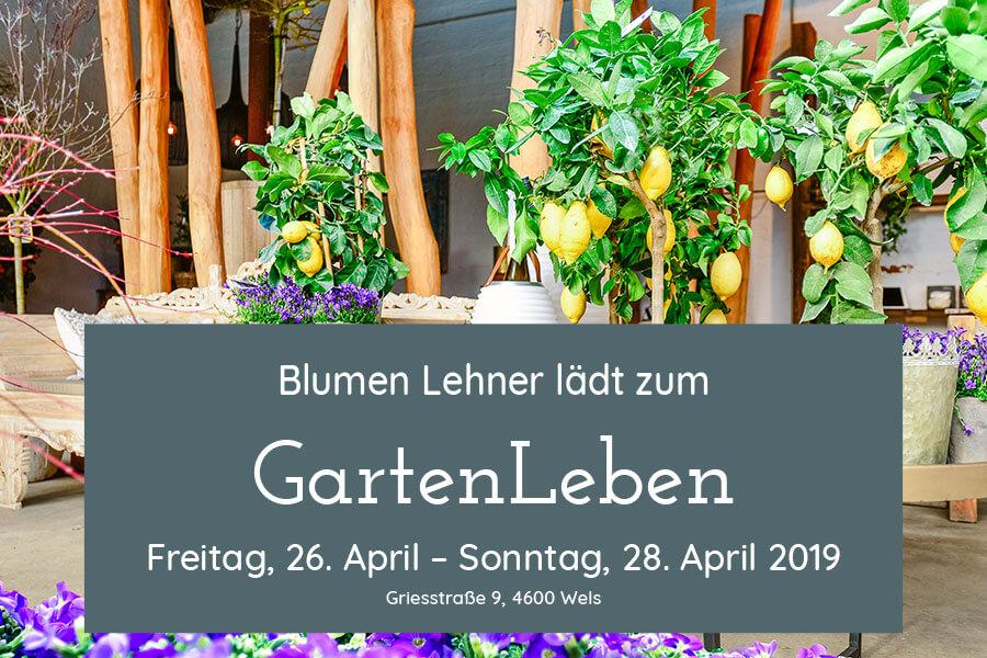 GartenLeben 2019